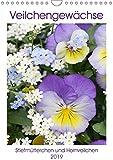 Veilchengewächse Stiefmütterchen und Hornveilchen (Wandkalender 2019 DIN A4 hoch): Fröhlich bunte Blütenporträts (Monatskalender, 14 Seiten ) (CALVENDO Natur)