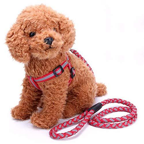 XJZxX Hundeleine Rutschseil Führleine Starkes Hochleistungsgeflochtenes Seil Keine Zugleine Führleinen Mittelgroße Hunde (Farbe : Rot, größe : L)