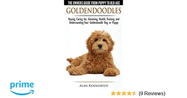 Goldendoodles The Owners Guide From Puppy To Old Age Choosing