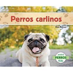 Perros Carlinos (Perros / Dogs)