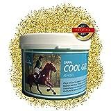 EMMA ♥ Pferdebalsam kühlend I Kühl-Salbe für Pferde I Pferdesalbe für Muskeln & Gelenke I Kühlgel für Verspannungen mit Arnika, Menthol & Rosmarin 1000 ml