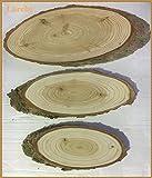 3 versch. ovale Baumscheibe aus Lärche unbehandelt natur ca. 40,30,20 cm lang