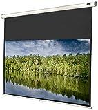 celexon manuell ausziehbare Rollo-Beamer-Leinwand Economy - 180 x 102 cm - 16:9 - Gain 1,0 - Full-HD und 4K