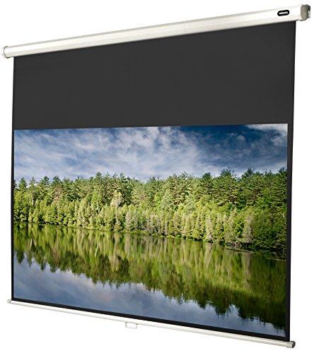 celexon manuell ausziehbare Rollo-Beamer-Leinwand Economy - 220 x 124 cm - 16:9 - Gain 1,0 - Full-HD und 4K