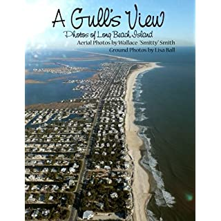 A Gull's View: Aerial View of Long Beach Island by Lisa Ball (2013-10-22)