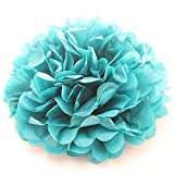 Ipalmay 10PCS Assorted Colors Tissue Paper Pom Poms Flower Balls For Weeding Birthday Party Decorations(8 Inch, Teal)