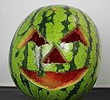 KING OF HALLOWEEN.DE-9 Teilig-inkl 6Schnitzvorlagen-Halloween Deco-einfache Kürbis Deko-Halloween Party-Kürbis Schnitzset -für Kinder für KING OF HALLOWEEN.DE-9 Teilig-inkl 6Schnitzvorlagen-Halloween Deco-einfache Kürbis Deko-Halloween Party-Kürbis Schnitzset -für Kinder