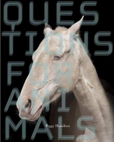 Questions for Animals (New Series) by Hamilton, Peggy (2013) Paperback