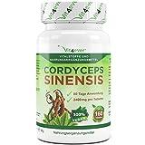 Cordyceps Sinensis 160 vegane Tabletten, 2400mg Cordyceps Sinensis Pulver, Raupenpilz, Verwendung von Cordyceps Sinensis Extrakt 10:1, Vit4ever