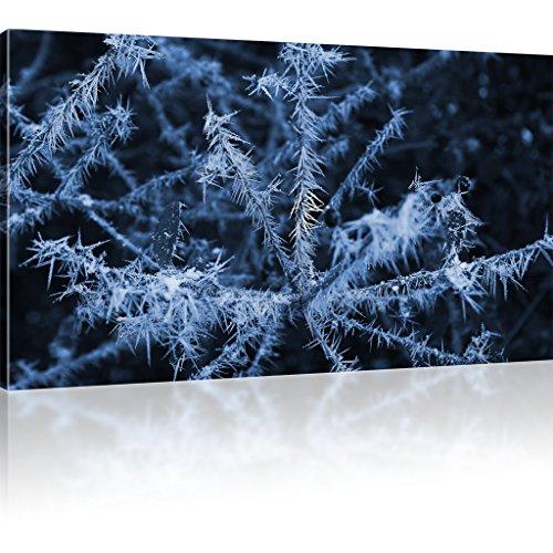 Wandbild Pflanze im Winter Leinwandbild Natur Wald Bild auf Leinwand