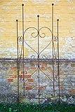 KUHEIGA Rankgitter halbrund zum Stecken Rost 144cmx5x30cm Wandrankgitter Gitter Hauswand