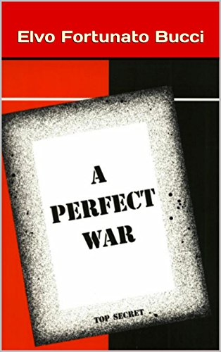a-perfect-war-english-edition