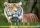 Tiger: kraftvoll und elegant (Tischkalender 2018 DIN A5 quer): Tiger: Die größte Katzenart der Erde (Monatskalender, 14 Seiten ) (CALVENDO Orte) [Kalender] [Apr 01, 2017] CALVENDO, k.A.