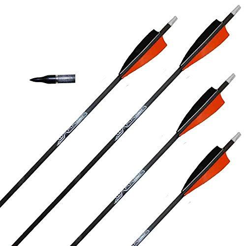Traditioneller Bogensport 6 St. Pfeile Gold Tip Warrior 700 4