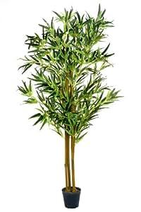bambusbaum 1 60 m bambus k nstlich kunstbambus. Black Bedroom Furniture Sets. Home Design Ideas