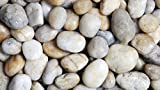 Polished Pebbles, Natural, 1 kg, White, Decorative Garden Torrontes, Topper Stones, 3-5 cm
