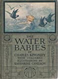 Priory Classics: Water Babies: Series Two (Priory classics - series two)