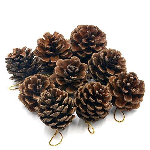 Weihnachten Tannenzapfen Dekoration Kugeln 12PCS Xmas Tree Party Zum Aufhängen Dekoration Ornament mit Kordel für Das Handwerk Home Decor aus Digital Art
