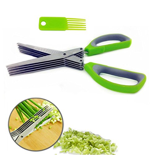 kitch-it-tm-ciseaux-5-lames-a-herbes-persil-acier-inoxydable-vert