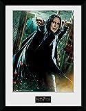 GB eye Ltd Harry Potter, Snape Zauberstab, Poster, gerahmt 30x 40cm, verschiedene