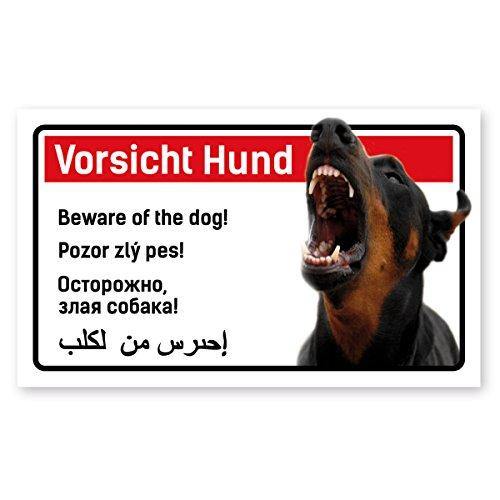 Vorsicht Hund Schild 5-sprachig 25x15cm Kampfhund Dobermann