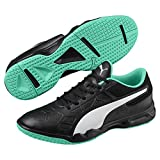 Puma Tenaz Indoor Teamsport Schuhe Black-White-Green 3.5