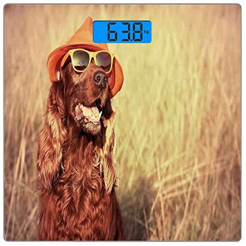 Precision Digital Körpergewicht Waage Animal Decor Ultra Slim gehärtetes Glas Personenwaage Genaue Gewichtsmessungen, lustige Retro Irish Setter Hund mit Hut und Sonnenbrille Humor Joy Bild, Redbrow