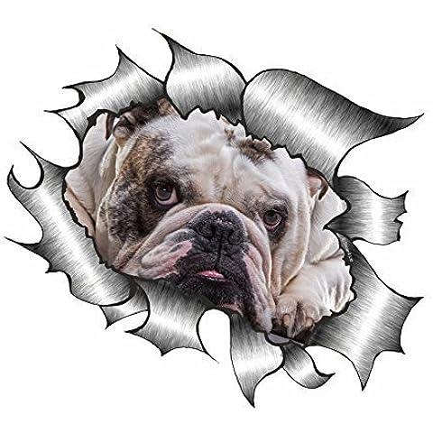Sticar-it Ltd METALLO LACERATO Adesivo Per Auto Carino British Bulldog cane animale domestico Decalcomania in vinile - Multi, A4 - circa 300mm x 210mm