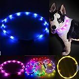 Ireenuo LED-Hundehalsband, per USB aufladbar, wasserdicht, für Sicherheit nachts, Blinklicht , leuchtend, verstellbar, für kleine / mittlere / große Hunde