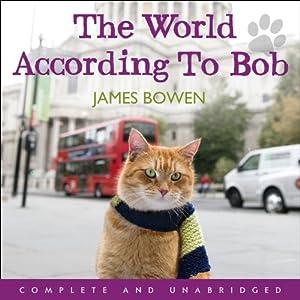 James Bowen A Street Cat Named Bob Sequel