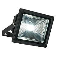 Saxby Olea IP65 Projecteur LED 30W