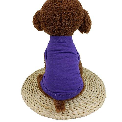 Balock Schuhe Mode Niedlichen Hund Kostüm,Einfarbig Katze Hund Weste Classics Kleidung,Perfekt Zum Wandern, Joggen, Jagen (G, XL) (Niedlichen Hund Und Baby Kostüme)