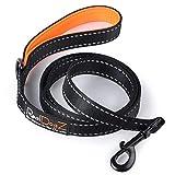 RealDogZ Schwarze 150cm Hundeleine für Mittel-Große Hunde gepolstert orange 1,5m Umhänge-Leine