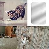Gorgebuy Sofaschutz über Katzen,Sofa Schutz Aufkleber Möbel, für Haustiere Katze Kratzen Protector Sofa-Sets,2Stk