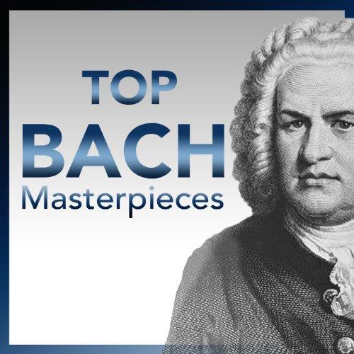 Brandenburgisches Concerto No. 6 in B Flat Major, BWV 1051: Adagio ma non troppo