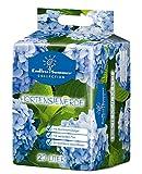 Floragard Endless Summer Hortensienerde blau 20 L