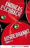 Ausgebrannt: Thriller von Andreas Eschbach