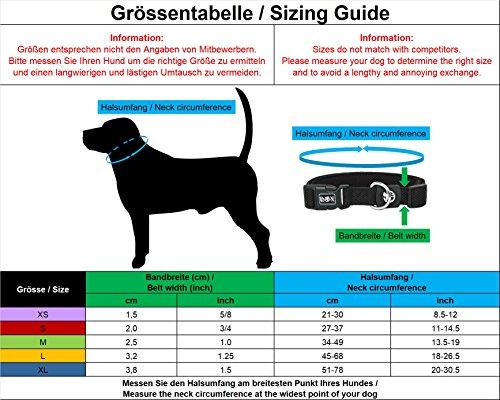 Hundehalsband Halsung aus Air-Mesh verschiedene Farben und Größen XS, S, M, L, XL: verstellbar, leicht, atmungsaktive, gepolstert, luftdurchlässig, soft, weich, stark, stabil, farbig, für große und kleine Hunde (Leine und Geschirr separat erhältlich) (Farbe Schwarz, Größe XS – 1,5 x 21-30 cm) - 2