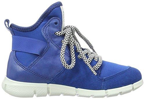 ECCO Intrinsic Sneaker, Scarpe da Ginnastica Alte Bambino Blu (50281bermuda Blue/cobalt/bermuda Blue)