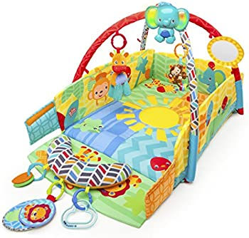 Bright Starts Sunny Safari Babys Play Place