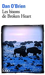 Les bisons de Broken Heart