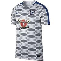 36691ef1cc Nike CFC M NK Dry SQD Top SS GX - Camiseta Entrenamiento Chelsea FC