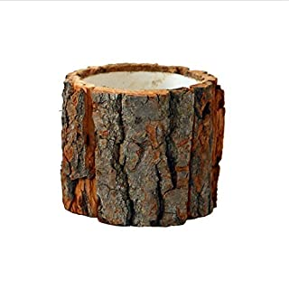 Awhao Bark Flower Pot Desktop Forest Style Natural Wooden Small Flower Pots for Home Office (L)