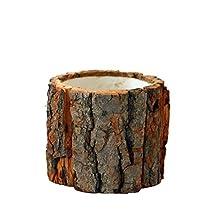 Awhao Ladrar Maceta Escritorio Forest Style Natural de madera pequeñas macetas de flores para el hogar (S)