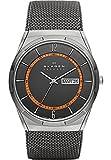 Skagen Herren-Armbanduhr Titanium Analog Quarz One Size, grau, grau