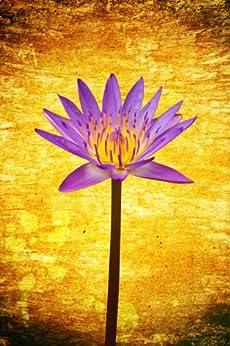111 haikus zen pour une vie meilleure (Haikus pour tous les jours t. 1)