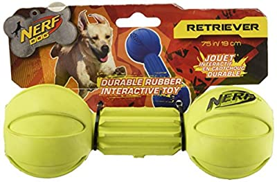 Nerf Dog Barbell Chew Toy