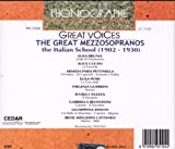 Great Voices [Import anglais]