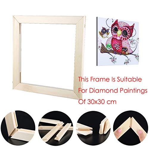 Riou DIY 5D Diamant Painting Zubehör DIY 5D Diamant Malerei Rahmen Bilderrahmen Kreuzstich Stickerei aus Holz Crystal Strass Handwerk für Home Wand Decor gemälde (30X30cm) -