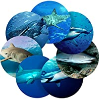 Graphic Flavour Sharks Reward Sticker Labels, Children, Parents, Teachers
